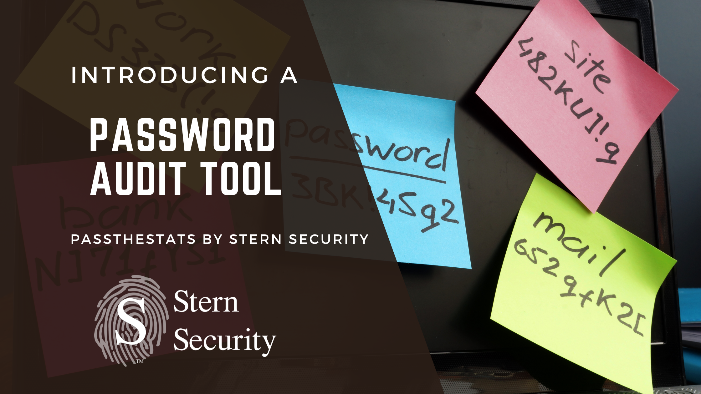 A password auditing tool by Stern Security